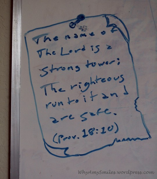 The name of the Lord is a strong tower; The righteous run to it and are safe. (Proverbs 18:10)